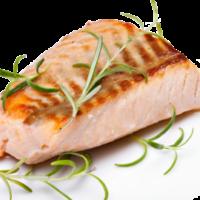 Salmon_large